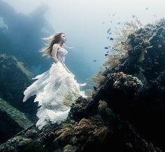 Impresionantes retratos subacuáticos realizado con 7 buzos, 2 modelos y un naufragio  - paredro.com.
