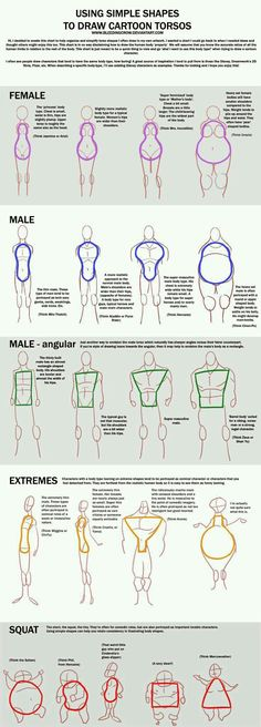 how to draw different body shapes male and female big small reference