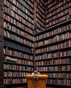 Now this is a bookshelf!