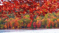Beautiful Views of Fall Foliage - weather.com