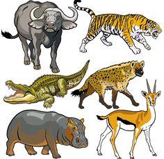Vector set of wild animals design graphic 06 free