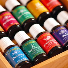 The Everyday Oils collection - body systems the oils included support.