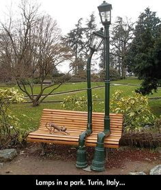 Lamps in a park...