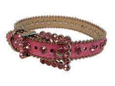 Beautiful dog collar ♥ my babyy neeeds this!
