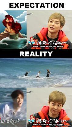 xiumin, suho is the little mermaid..............hahahahahahahahahahahahahahahahahaha