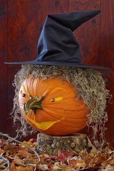 60 Best Pumpkin Carving Ideas Halloween 2018 - Creative Jack o Lantern Designs Halloween Pumpkin Designs, Scary Halloween Decorations, Diy Halloween Decorations, Halloween Pumpkins, Fall Pumpkin Crafts, Funny Pumpkins, Pumpkin Ideas, Fall Pumpkins, Funny Pumpkin Carvings