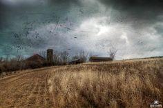 https://flic.kr/p/j9amP1   January Thaw by Jim Crotty   January 11 2014 over Raptor Ridge by Jim Crotty