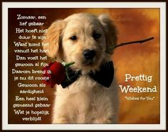Prettig weekend!