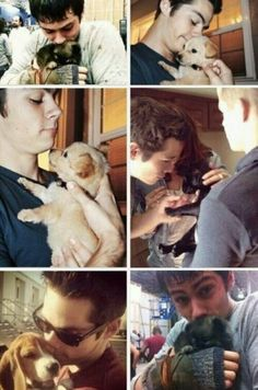 Dylan O'Brien and dogs