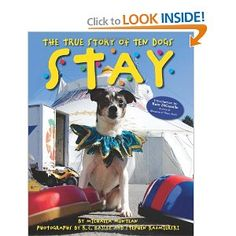 Stay: The True Story of Ten Dogs: Michaela Muntean, K.C. Bailey, Steve Kazmierski: 9780545234979: Amazon.com: Books