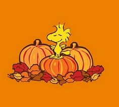 Oct 7 Woodstock on a pumpkin Snoopy Halloween, Charlie Brown Halloween, Fall Halloween, Snoopy Images, Snoopy Pictures, Cute Fall Wallpaper, Halloween Wallpaper, Charlie Brown Und Snoopy, Happy Tuesday Images
