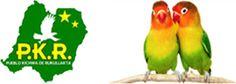 Bald werde ich dort sein: im Amazonastiefland von Ecuador...