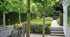 http://www.tuindesign-ten-horn.nl Tuinarchitect - tuinontwerp. Klassieke kleine achtertuin met hoogteverschillen in Limburg.