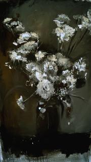 Oilflower