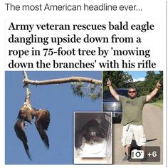 Army Veteran Rescues Bald Eagle Dangling Upside Down From A Rope In 75 Foot Tree By Mowing Down The Branches With His Rifle - Funny Memes. The Funniest Memes worldwide for Birthdays, School, Cats, and Dank Memes - Meme Stupid Funny, Funny Cute, Really Funny, Funny Jokes, Funny Stuff, Random Stuff, Mom Jokes, Funny Things, American Story