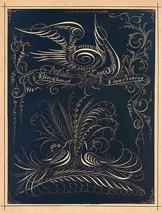 Antique 1880 Calligraphy, Pen and Ink Flourishing Print, White on Black, Birds, Eagle, Flowers