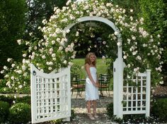 New Dawn Climbing Roses on a Walpole Arched Trellis & Gate.  Miss this so much! (my daughter in the pic, 8th grade graduation)