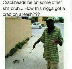 Crackhead's be crazy! Funny As Hell, Haha Funny, Hilarious, Lol, Funny Stuff, Random Stuff, Funny Ghetto Memes, Funny Texts, Animals