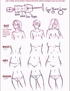 Ladies ✤ || CHARACTER DESIGN REFERENCES | 解剖 •  علم التشريح • анатомия • 解剖学 • anatómia • एनाटॉमी • ανατομία • 해부 • Find more at https://www.facebook.com/CharacterDesignReferences & http://www.pinterest.com/characterdesigh if you're looking for: #anatomy #anatomie #anatomia #anatomía #anatomya #anatomija #anatoomia #anatomi #anatomija || ✤