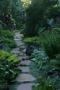 A narrow side yard becomes a fascinating journey - Fine Gardening