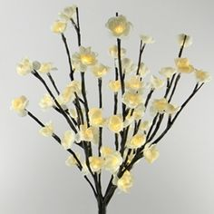 Decorative Lights for Parties Weddings Holidays & Special Occasions