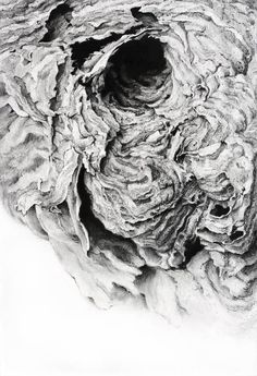 Huguette Despault | Growth and Corrosion | Pinterest