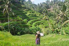 10 des meilleures choses à faire à Ubud : Exploration du centre de Bali  voyage bali smartbox Ubud, Illumination Spirituelle, Voyage Bali, Rice Terraces, Les Cascades, Exploration, Art Japonais, Places To See, Arts