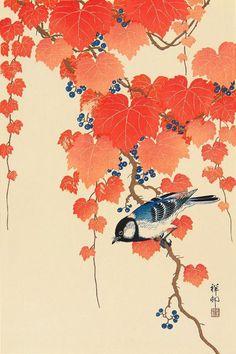 Из эпохи Мэйдзи в эпоху Сева, который работал в укие-э・гравюра на дереве художника Охара участников Нагоя    _   明治時代から昭和時代にかけて活躍したの浮世絵師・木版画家の小原古邨(おはらこそん)さんの木版画作品