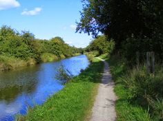 Canal Stuff, photo taken on the Wyrley and Essington Canal near Pelsall