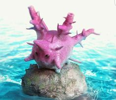 Corsola Pokemon Team, Pokemon Fan Art, Pokemon Cards, Pokemon Na Vida Real, Pokemon In Real Life, Pokemon Balloons, Manga, Ghost Type, Pokemon Pictures
