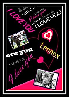 #Lennox army & all tweeps, pls visit (Save lennox) to see what we can do 2 end #BSL & save lennox http://ctechwebhosting.co.uk/savelennox/wordpress/how-you-can-help/
