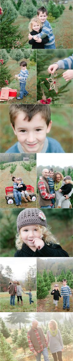 Knoxville Family Photographer | Christmas Photo Session Ideas | Sarah McAffry | Voted Knoxville's Best Photographer | Tree Farm
