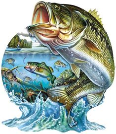 Home Art full Square Diamond Embroidery fish Full Rhinestones diy Diamond Painting Cross Stitch Kits Diamond Mosaic Pattern Amazing Animals, Unique Animals, Cross Stitch Animals, Cross Stitch Kits, Bass Fishing Pictures, Pesca Spinning, Fish Jumps, Diamond Drawing, Mosaic Pictures