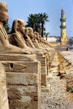 Photo about Sphinxs outside the Temple of Luxor, Egypt. Image of majestic, fashioned, luxor - 4852682 Ancient Egyptian Art, Ancient Ruins, Ancient History, Luxor Temple, Visit Egypt, Valley Of The Kings, Egypt Travel, Ancient Architecture, Ancient Civilizations