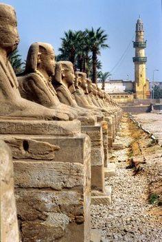 Sphinxs fuera del templo de Luxor, Egipto.