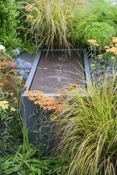 Grasses soften the edges of a sleek, contemporary water feature or pond. Contemporary Water Feature, Contemporary Garden, Garden Pond, Water Garden, Natural Pond, Modern Garden Design, Water Features In The Garden, Garden Inspiration, Pond Ideas