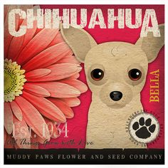 Dogs and Flowers Art Print  Chihuahua Art by DogsIncorporated
