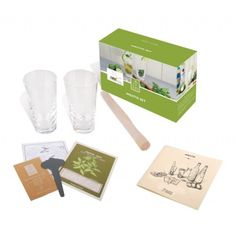 Fallen Fruits Mojito Drinks Making Set for 2