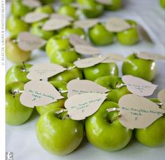 fruits place cards