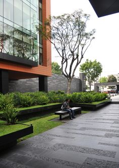 dlc_coyoacan corporate campus