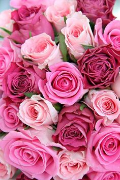 New Flowers Bouquet Wallpaper Pink Roses 57 Ideas Rose Wallpaper, Iphone Wallpaper, Wallpaper Backgrounds, Disney Wallpaper, Wall Wallpaper, Wallpaper Quotes, Pretty Flowers, Pink Flowers, Happy Flowers