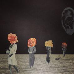 q-ta. flower heads.