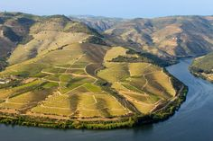 Douro - Portugal. First demarcated wine region in the world, UNESCO humanity heritage. Port comes from here.