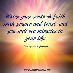 Water your seeds of faith with prayer and trust.