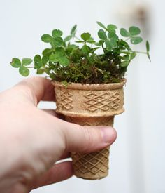 Ice Cream Cone Planters: Clever idea, great to do with the #kids at spring time: place a small plant in an ice cream cones and plant the whole thing. #gardening #DIY