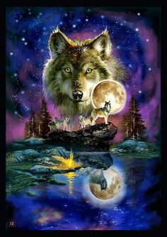 Star night wolves