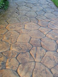 Stamped Concrete walk - really like the pattern!