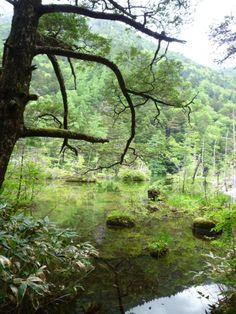 """Myojin-ike""(Sacrario), Kamikochi Nagano Japan"