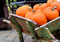 http://www.tinynewyorkkitchen.com/pumpkins/