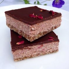 Raw vegan coconut bars